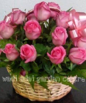 Pink roses, gift basket, gift arrangement, special gift