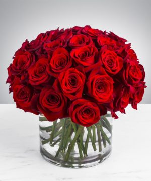 Roses for Special occasions such as Valentine day, Mothers day, Teachers day and any other special occasions